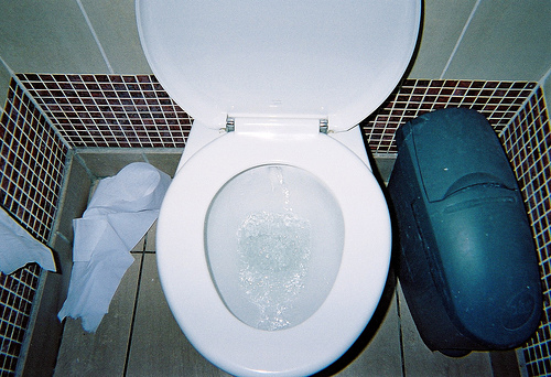 Flushing toilet with paper and bin